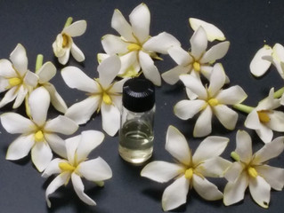 香り抽出方法の使い分け