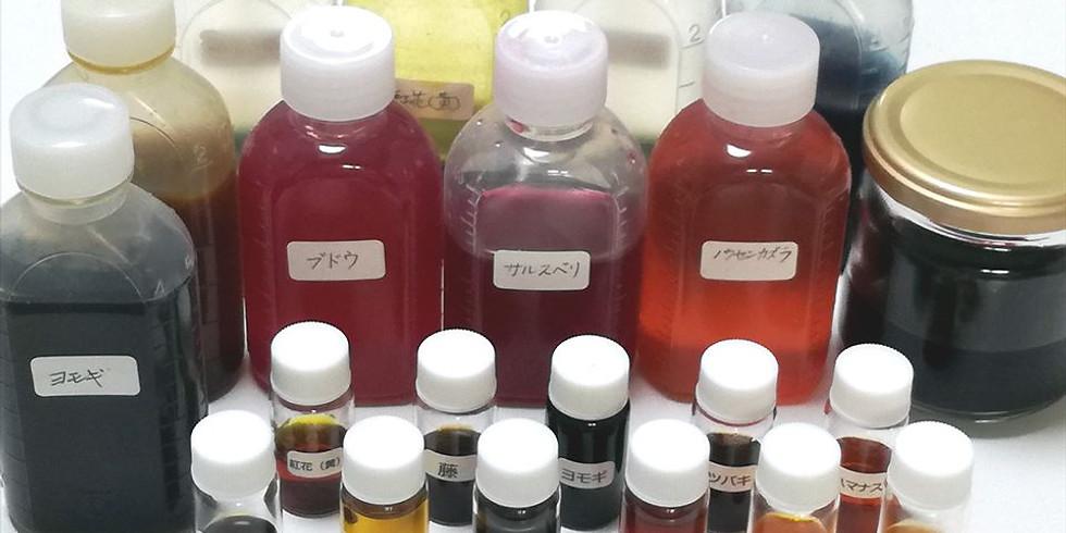カラム抽出 ~植物色素を抽出する~