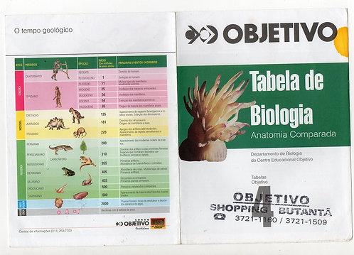 Anatomia  Comparada - Tabela Objetivo 4