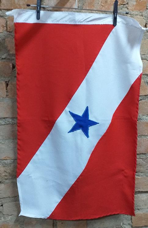 Bandeira do Pará