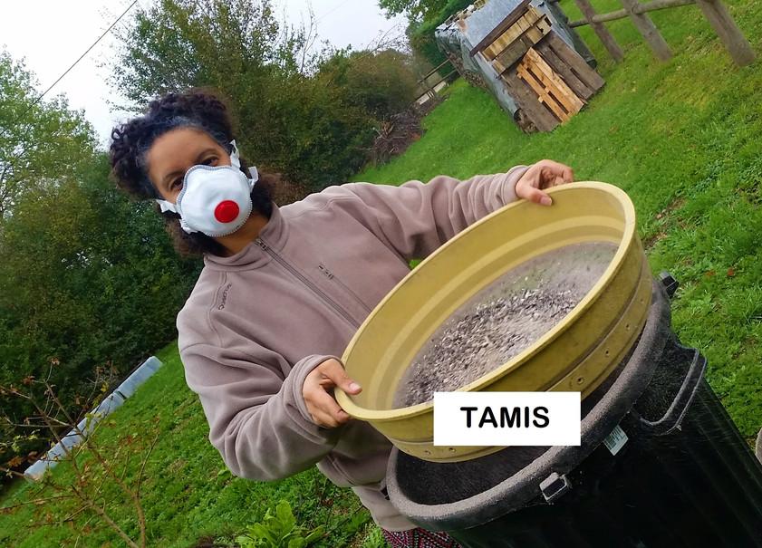 2.TAMIS.jpg