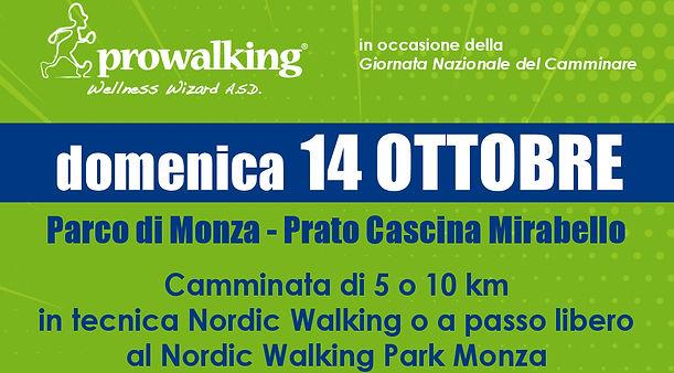walk2018_2.jpg