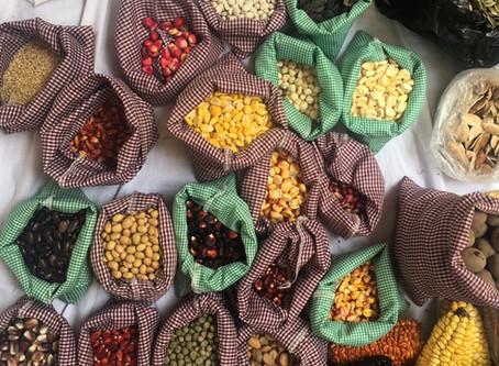 Tippytea en la Fiesta de la semilla