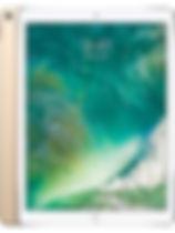 Apple iPad Air 2Cellular