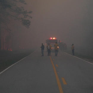 Holly Shelter Fire 2008