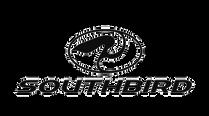 Southbird-Surf-Shop.png