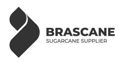 logo brascane 3333.png