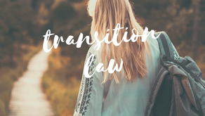 Sec. 300.43 Transition services