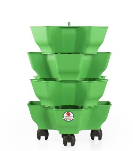 Yonca - Yeşil