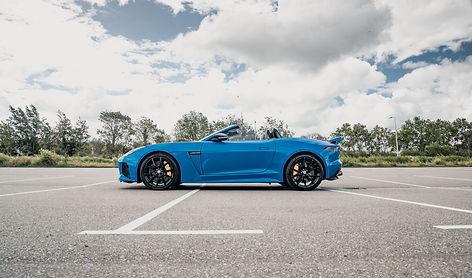Jaguar .jpg