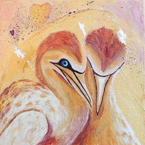 Oiseaux D'Amour / Love Birds