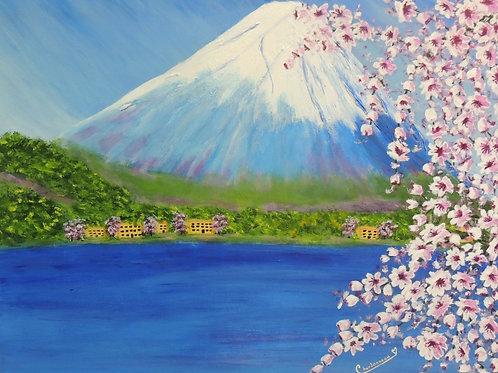 Mont Fudji Japon (reconnaissance)