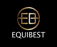Equibest 1.1 metallic gold-01.png