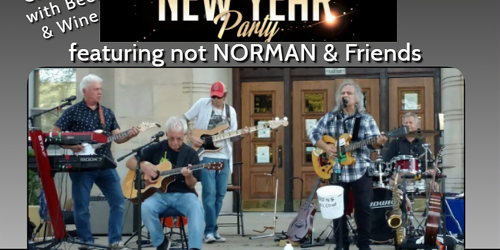 2019 New Years Party with not Norman and Friends
