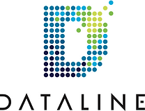 Dataline Data Logo.png