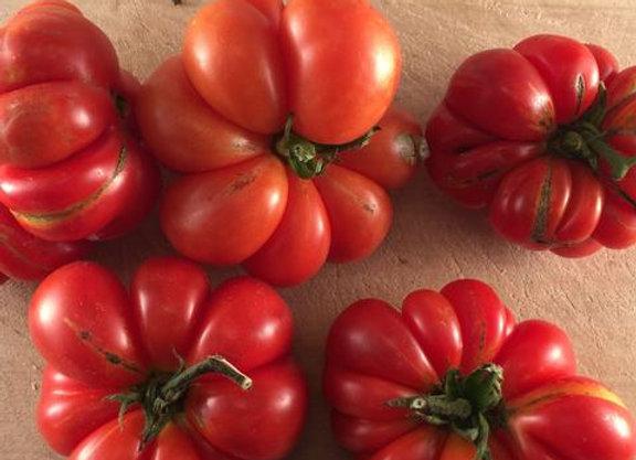 Tomate Ancestrale