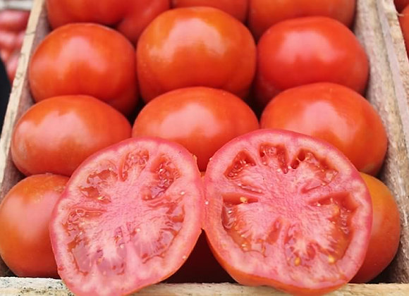 Tomate Rouge (Caisse)