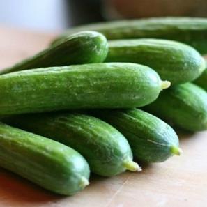 Concombre libanais Green finger