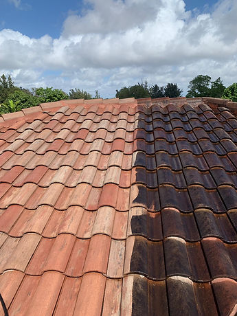 roof cleaning.jpg