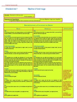 perruchecroupionrouge_Page_23.jpg