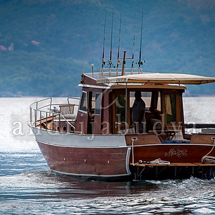 Mozart boat
