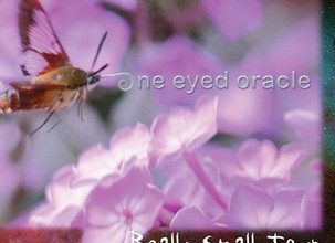 """New Album: One Eyed Oracle """"Really Small Town"""""""