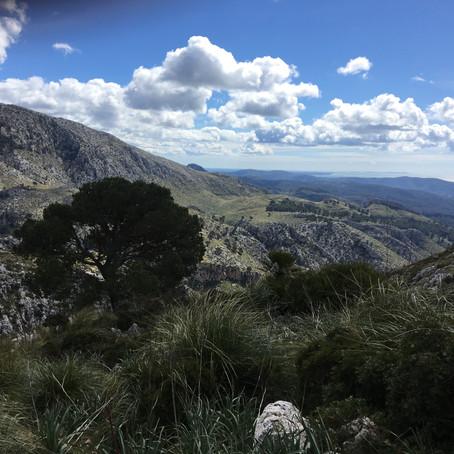 Galatzó Trail-Galatzó Half