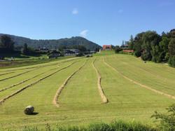 Ansicht_Gmunden_Landschaft