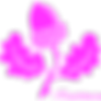 Trachtlerin_Logo-144.png