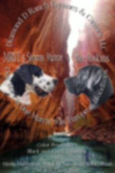 caninepairing2020.jpg
