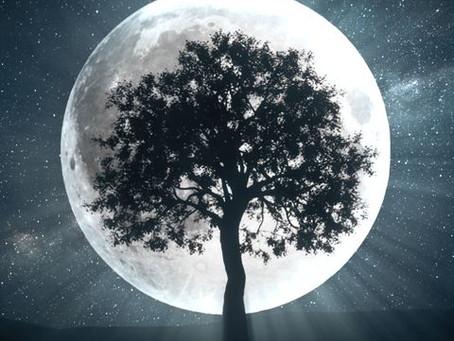 Manifestation Magick: Full moon Ritual 10/31/2020