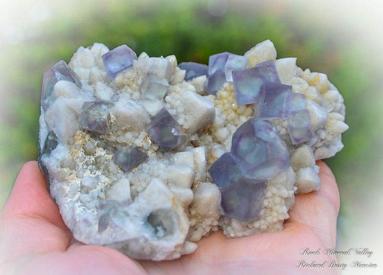 Fluorite sur Quartz de Mongolie