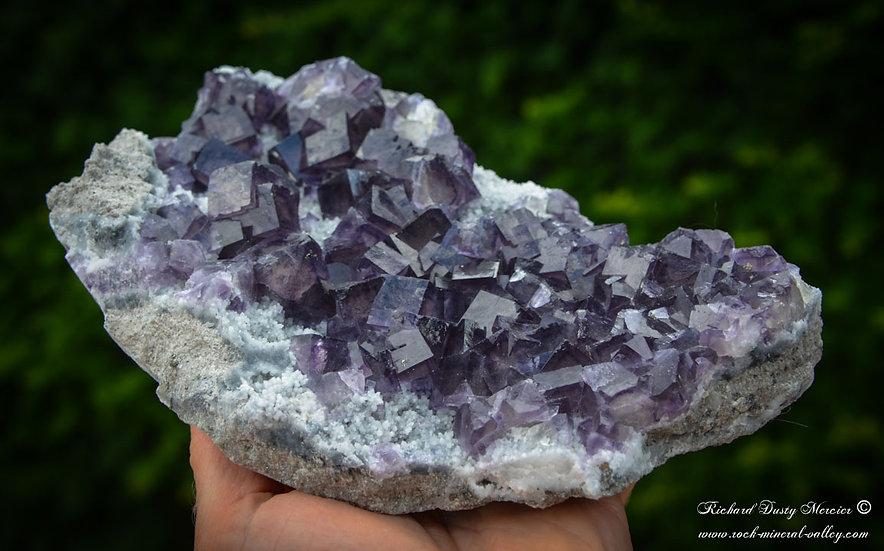 Fluorite Fantômes et Pyrite sur Quartz de Hunan, Chine