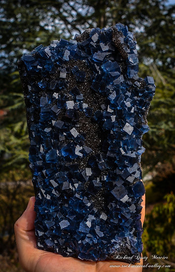 Fluorite bleue sur Quartz Fumé de Fujian, Chine XL