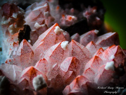 Pink Red Hematoide Quartz