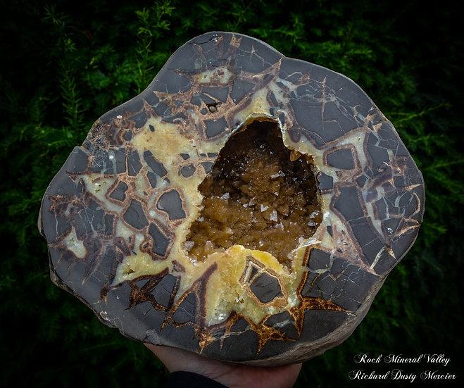 Nodule de Septaria Géode des USA