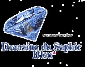 Domaine du Saphir Bleu LOGO.png