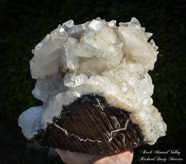 Calcite recouverte d'Apophyllite