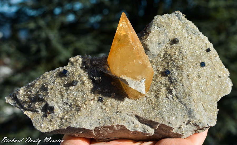 Calcite avec Sphalerite de Elmwood Mine, USA