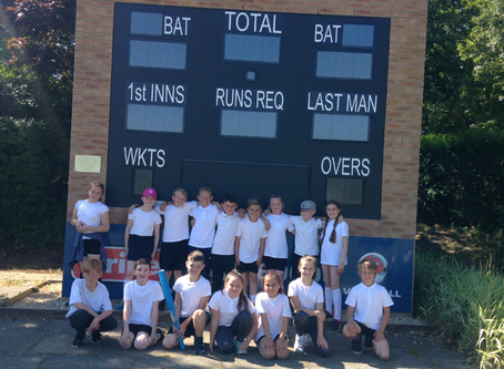 Kwik Cricket Cluster