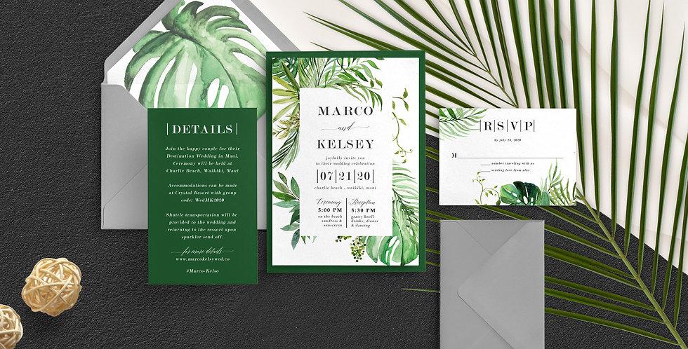 Beach Tropics, Marco Suite
