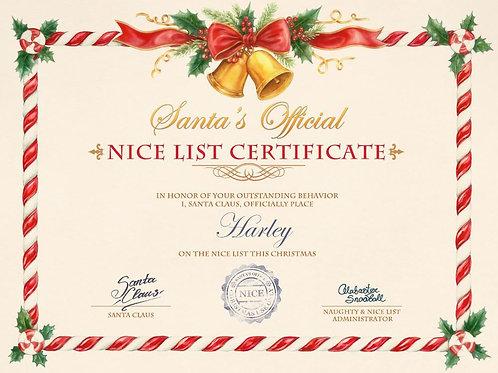 Naughty or Nice Certificate