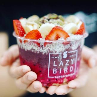 Lazy Bird Bowl