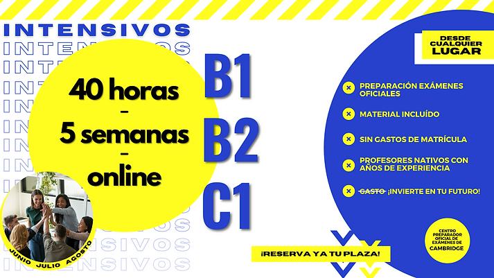 WEB INTENSIVOS (6).png