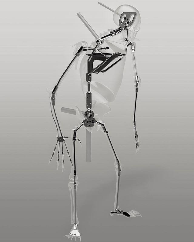 """""""Odokuro"""" skeleton armature"""