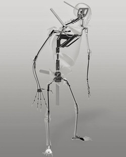 """Odokuro"" skeleton armature"