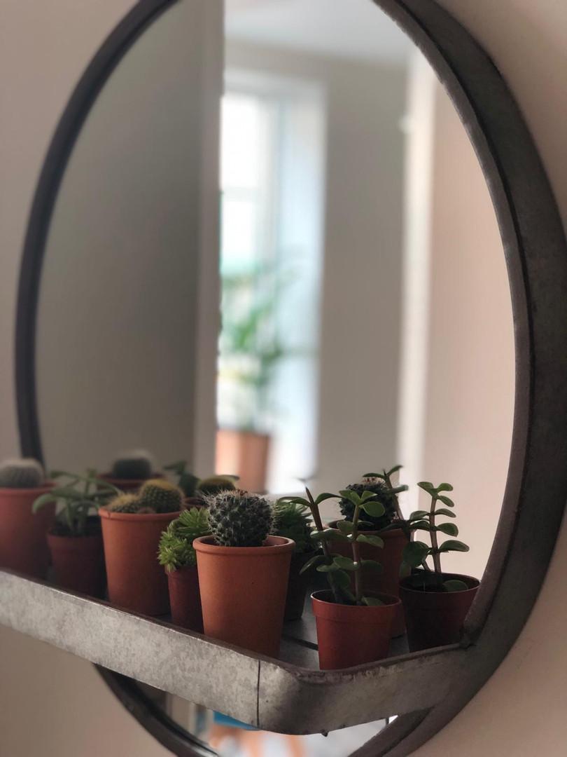 Rest mirror