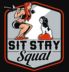 Sit Stay Squat