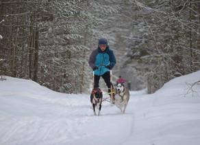 HARNESS DOG SPORTS: PREPARE FOR YOUR WINTER SEASON!