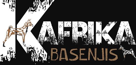 Kafrika Basenji